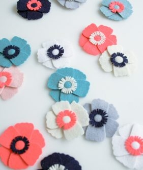 Anemone Magnets