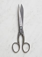 Everyday Scissors