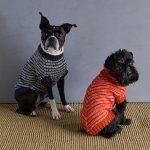 Sole Salvo For Purl Soho: Pinstripe Dog Sweater