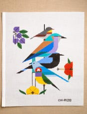 Charley Harper: Rainforest Birds