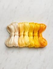 Daffodil Yellow-swatch