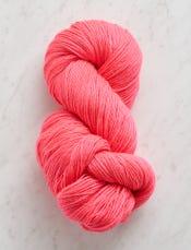 Bright Flamingo, Solid-swatch